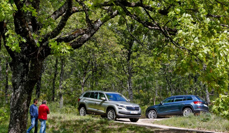 What Skoda Kodiaq buy, Diesel or gasoline?